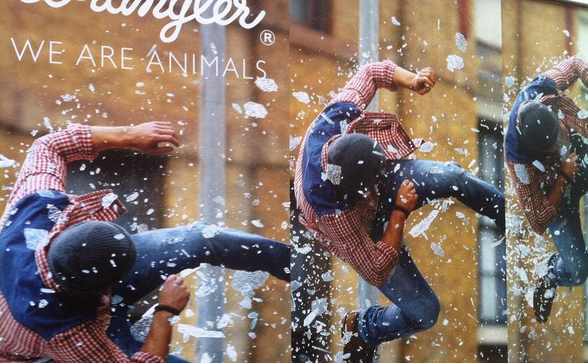 Made for animals